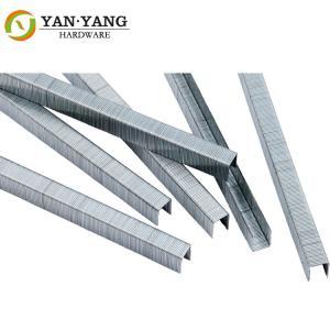 China Furniture hardware length 10 mm 22 gauge upholstery gun staples 7112 wholesale