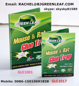 China Factory Rat Mouse Glue Traps Peanut Scent Cardboard Mouse Glue Traps  Email: rachel@bjgreenleaf.com wholesale