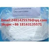 China 99% Purity Testosterone Powder Testosterone decanoate CAS 5721-91-5 For Muscle Growth wholesale
