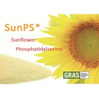 China Halal Certificated Brain Support Supplements PhosphatidylSerine Sunflower Lecithin wholesale