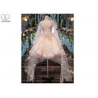 China Pink Short Fitted Wedding Dress Special Irregular Transparent Lace Long Tail on sale