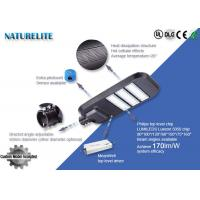 Buy cheap Naturelite 160-170LM/W 120W LED Street Light Phlipis Luxeon SMD5050 for Highway, Bridge Lighting, ect from wholesalers