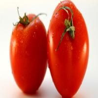 China ketchup tomato paste in asepticbag wholesale