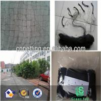 Anti sparrow net/sticky nets/Anti pigeon net/Bird mist net