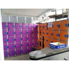 China Plastic Gym Lockers Wtih Master Combination Padlock , 4 Tier Employee Storage Lockers wholesale