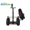 China Cart Max Range 70km Self Balancing Scooter Customized Color Option Segway Golf wholesale