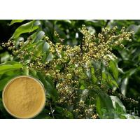 China Soapnut Saponin Cosmetic Raw Materials Soapberry Extract For Whitening Spot wholesale