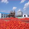 China popular tin can tomato ketchup wholesale