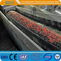 China ST/S2500 Fire Resistant Steel Cord Conveyor Belt Fire Retardant Conveyor Belt wholesale