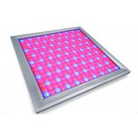 China Alluminum Waterproof LED Grow Lights For Vegetables , Indoor Grow Room LED Lights wholesale