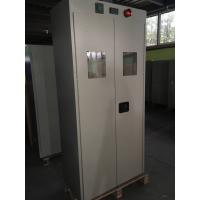 China Co2 Gas cylinder safety storage cabinets , Oil drum storage cabinets for gas cylinder wholesale