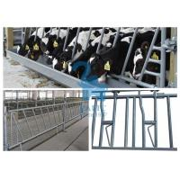 China Steel Cow Head Lock Fence Barriers Self Locking Feeder Panels For Pasture wholesale