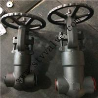 China FORGED STEEL GLOBE VALVE (RF/NPT/BW ends) wholesale
