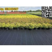 Buy cheap green house / garden black weed control cover fabric for weed barrier mat from wholesalers