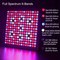 China Waterproof Full Spectrum LED Grow Lights With 660nm - 450nm Wavelengh wholesale