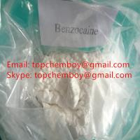 China Pure Benzocaine Powder , Pain Reliever Powder For Topical Anaesthesia CAS 94 09 7 on sale