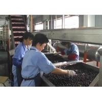 Buy cheap Blueberry Fruit Canning Machine , Fruit Processing Industrial Canning Machine from wholesalers