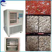 China factory price Fruit & Vegetable Processing freeze drying  Lyophilizer Freeze-Dried Pear Strawberry,Grape,Cherry Tomato on sale
