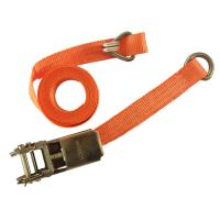 China CE Strap Ratchet Straps 1 Inch 1000KGS Lashing Strap Ratchet Tie-Down Straps with D-ring wholesale