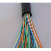 China Silicone Rubber Insulated and Sheathed Copper Tape Screen Control Cables wholesale