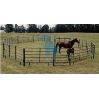 China Square Portable Horse Corral Panels Gate , Silver / Green Horse Round Pen Panels wholesale