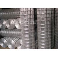 China 10 Gauge 1/2 inch Welded Wire Mesh 304 316 Galvanized Stainless Steel wholesale