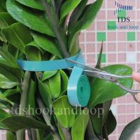 China Double Sided Reusable Cable Ties Hook And Loop DIY Cutting Adjustable Plant Ties wholesale