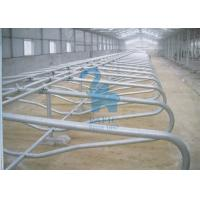 China Continuous Animal Locking Feed Barriers Metal Free Cubicles For Feedlot wholesale