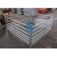 China Free Standing Livestock Metal Fence Panels , Goat Corral Panels With 6pcs Pole wholesale