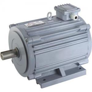 China Horizontal Electric Motor wholesale