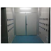 China Anti-Static Class 10000 Cargo Air Shower Tunnel For Cosmetic Workshop , Sandwich Panel wholesale