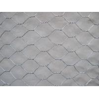 China Hot dipped Galvanized Chicken Wire Mesh , Anti Corrosion electric Poultry Netting wholesale