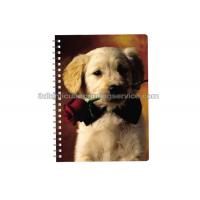 Quality PET / PP Jotter 3D Lenticular Notebook A5/A6 Size UV Printing for School for sale