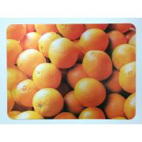 China Animal 3D Lenticular Plastic Placemat For Promotion 28 * 38cm wholesale