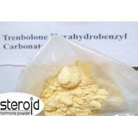 China CAS 23454-33-3 Trenbolone Steroids Trenbolone Hexahydrobenzylcarbonate / Parabolan wholesale