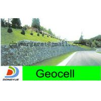 China geocell for green retaining walls on sale