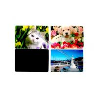 China Cartoon PP PET PVC Image 3D Lentiuclar Magnets UV Printing Souvenir wholesale