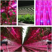 China T8 4 Feet Hydroponic Led Grow Lights For Vegetables / Flower , AC85-265V Input wholesale