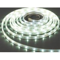 China LED Flexiable Strips SMD3014-60 silicon cased DC12V white color 6000K  IP68 high brightness wholesale