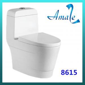 China New design sanitary ware washdown one piece closet #8615 on sale