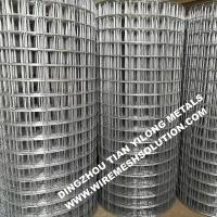 China 2 X 2 Galvanized Welded Wire Mesh Rolls Anti - Corrosion For Garden Decorative wholesale