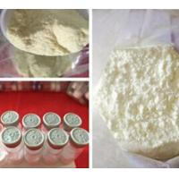 China Albuterol Sulfate CAS 51022-70-9 Weight Loss Powders for Bronchial Asthma Treatment wholesale
