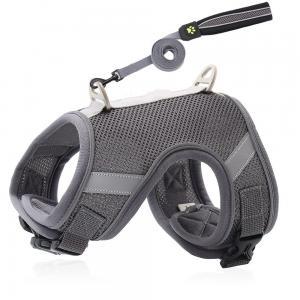 China Breathable Cat Harness And Leash Set , Padded S M L XL Dog Belt Set wholesale