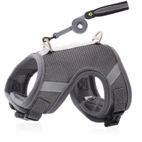 Buy cheap Breathable Cat Harness And Leash Set , Padded S M L XL Dog Belt Set from wholesalers