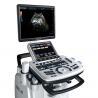 China Cardiac Probe Veterinary Ultrasound Machine 19 Inch High Resolution Display wholesale