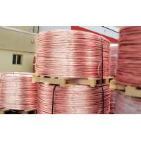 Guangdong Shengyu Cable Industry Co., Ltd.