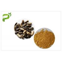 China Light Yellow Plant Extract Powder Natural Ingredient Milk Thistle Extraction wholesale