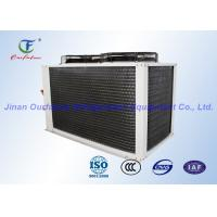 China Danfoss Air Cooled Refrigeration Compressor Unit For Freezer Commercial Food on sale