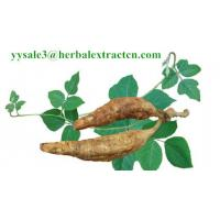 China Kudzu Root extract, Isoflavones 40%, CAS No.: 3681-99-0, Auxiliary lower blood pressure, Arctium Extract, Chinese Extrac wholesale