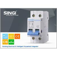 China AUT2 Switch electric Miniature Circuit Breakers for home , electrical mcb wholesale